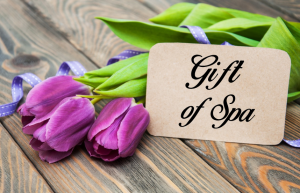 day spa, day spa gift certificate, massage, massage therapy, manicure, pedicure, hair waxing